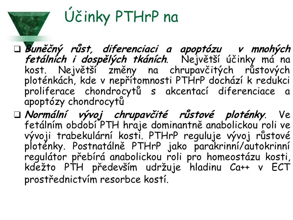 Účinky PTHrP na  Buněčný růst, diferenciaci a apoptózu v mnohých fetálních i dospělých tkáních.