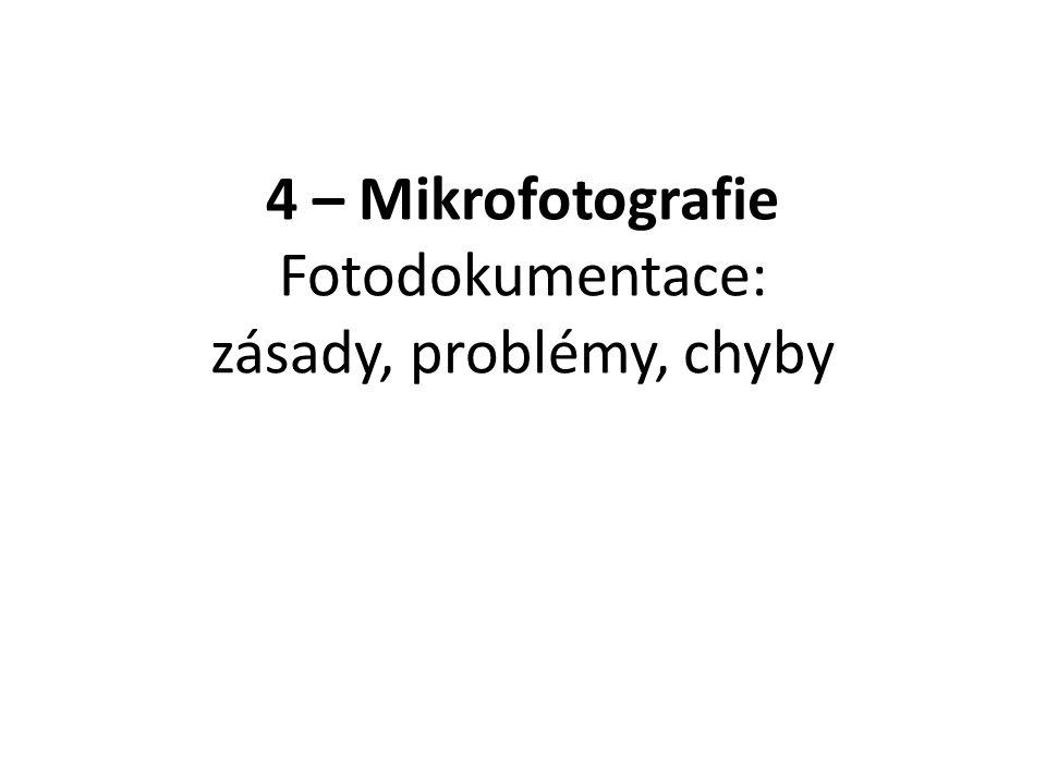 Obrazové formáty Rastrové (bitmapové) Vektorové – Např.
