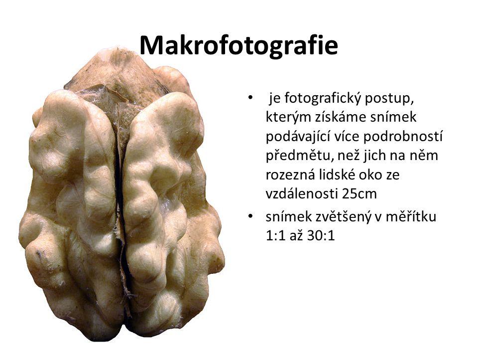 Makrofotografie Např.: snímek 2 cm velkého brouka bude mít při měřítku 1:1 na snímači či filmu rozměr 2 cm, takže velikost onoho předmětu na snímači či filmu odpovídá jeho skutečné velikosti.
