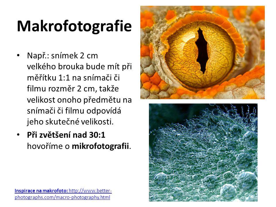 Makrofotografie Např.: snímek 2 cm velkého brouka bude mít při měřítku 1:1 na snímači či filmu rozměr 2 cm, takže velikost onoho předmětu na snímači č
