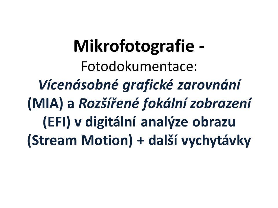 Mikrofotografie - Fotodokumentace: Vícenásobné grafické zarovnání (MIA) a Rozšířené fokální zobrazení (EFI) v digitální analýze obrazu (Stream Motion)