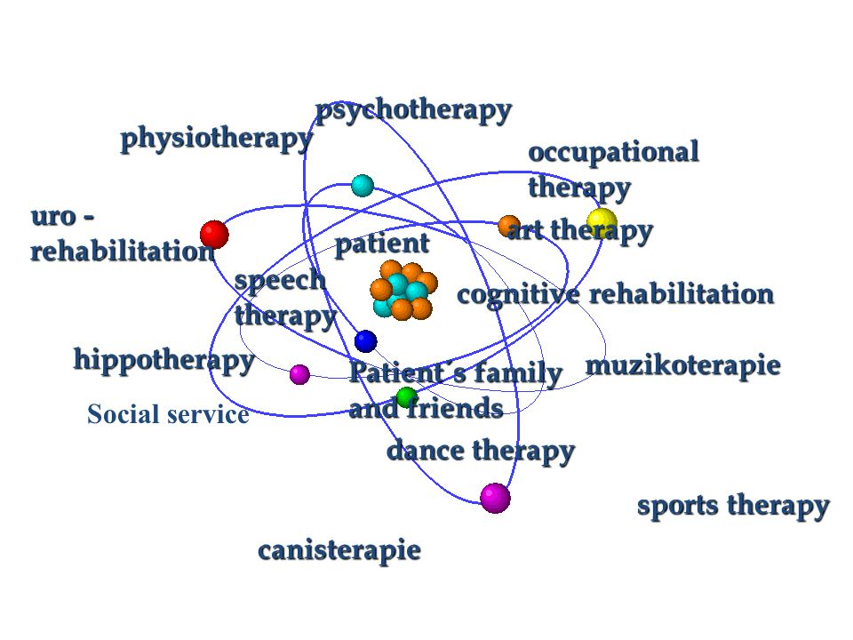 psychotherapy art therapy physiotherapy uro - rehabilitation dance therapy canisterapie speech therapy occupational therapy cognitive rehabilitation hippotherapy muzikoterapie Social service sports therapy patient Patient´s family and friends
