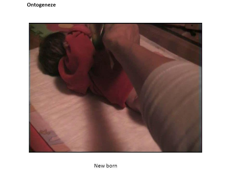 Ontogeneze New born
