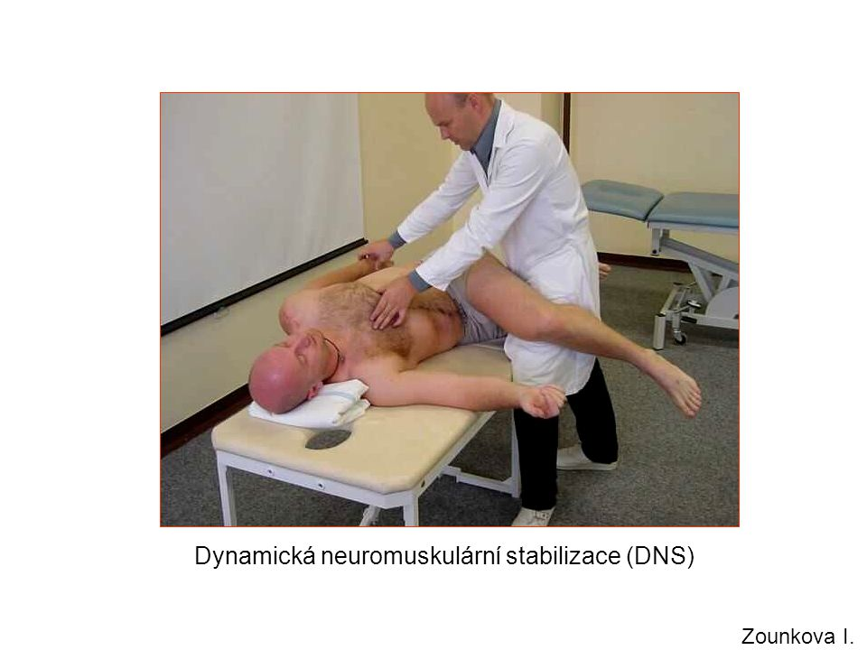 Dynamická neuromuskulární stabilizace (DNS) Zounkova I.
