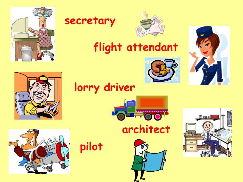 secretary lorry driver pilot flight attendant architect