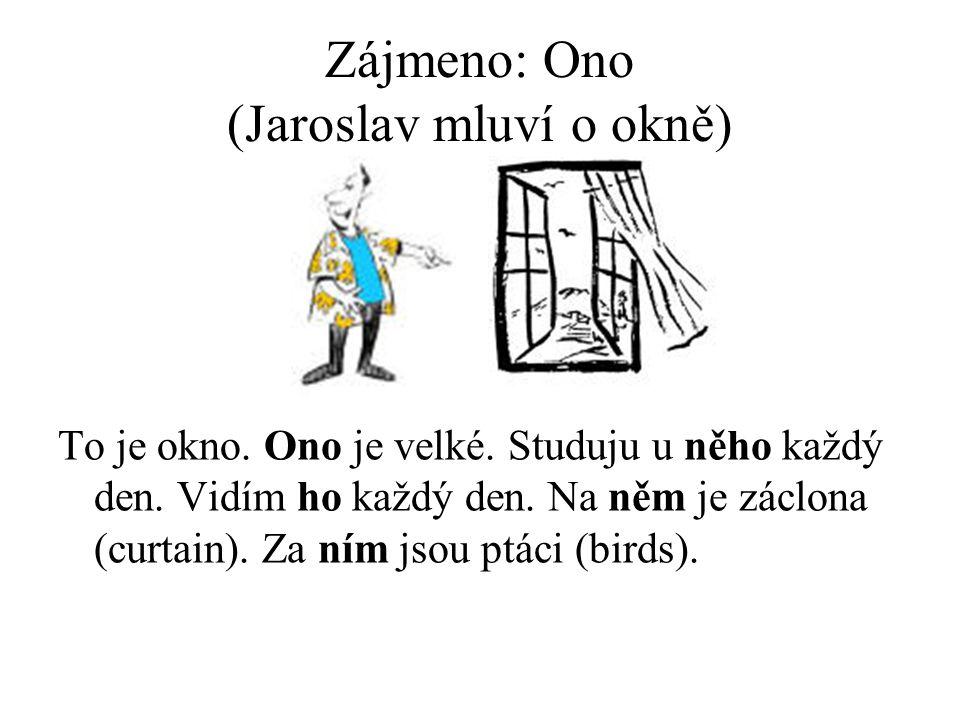 Zájmeno: Ono (Jaroslav mluví o okně) To je okno. Ono je velké.