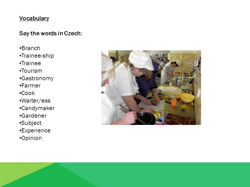 Vocabulary Say the words in Czech: Branch Trainee-ship Trainee Tourism Gastronomy Farmer Cook Waiter/ess Candymaker Gardener Subject Experience Opinion