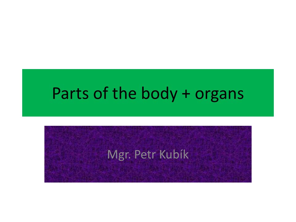 Parts of the body + organs Mgr. Petr Kubík