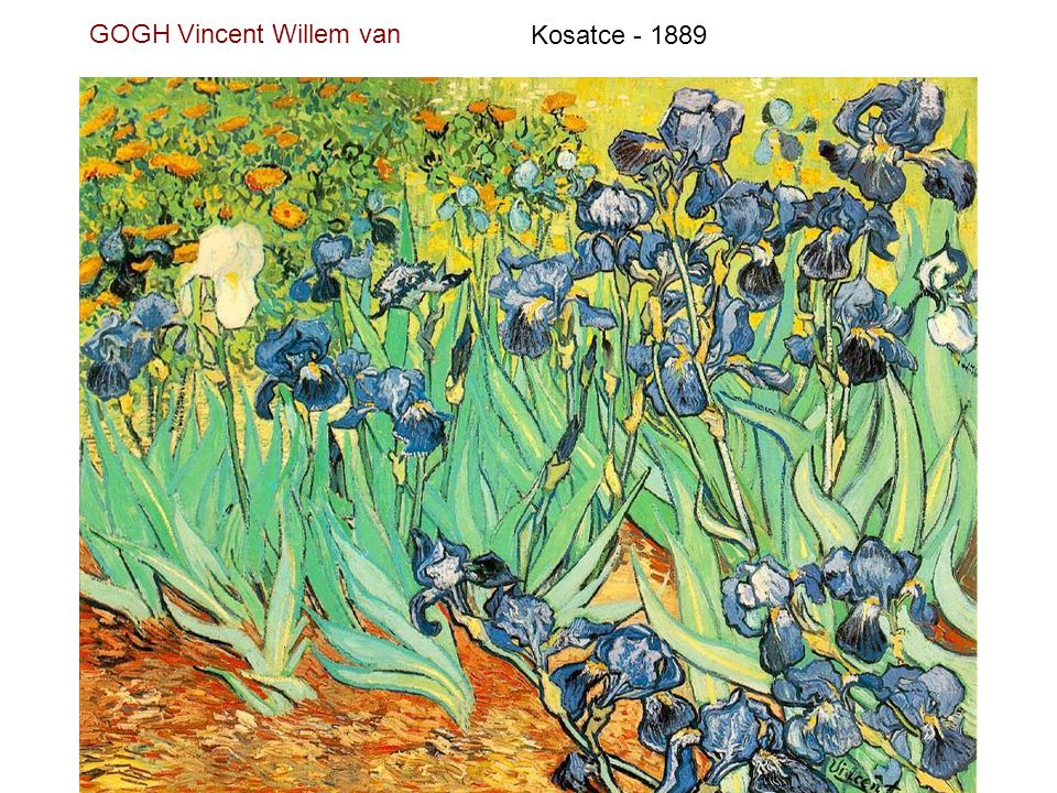 GOGH Vincent Willem van Váza s 12 slunečnicemi