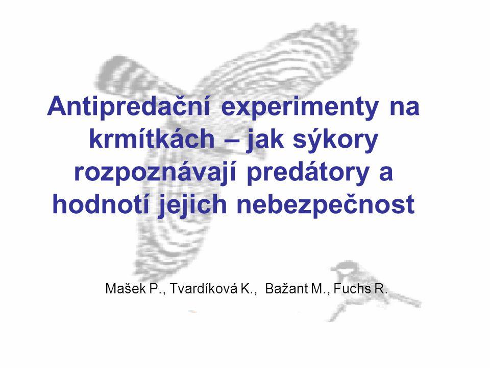 Antipredační experimenty na krmítkách – jak sýkory rozpoznávají predátory a hodnotí jejich nebezpečnost Mašek P., Tvardíková K., Bažant M., Fuchs R.