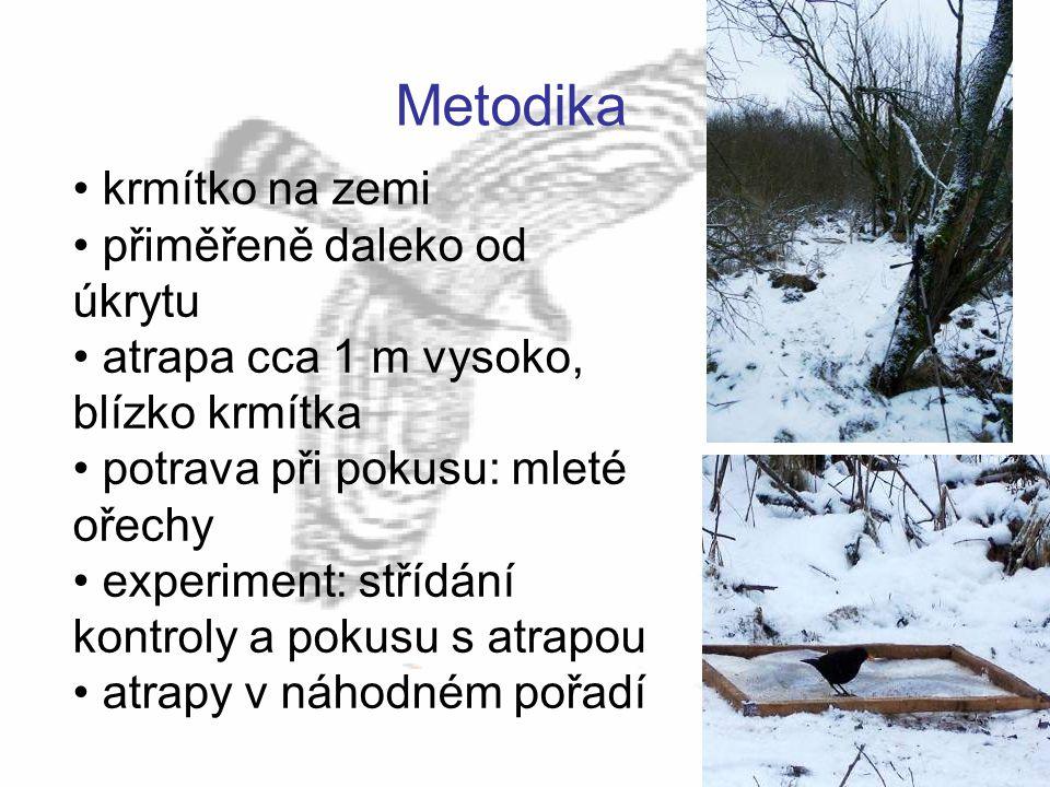Metodika krmítko na zemi přiměřeně daleko od úkrytu atrapa cca 1 m vysoko, blízko krmítka potrava při pokusu: mleté ořechy experiment: střídání kontro