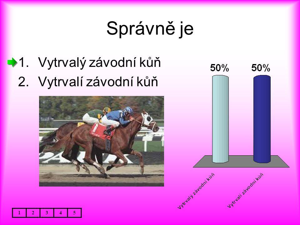 Správně je 12345 1.Vytrvalý závodní kůň 2.Vytrvalí závodní kůň