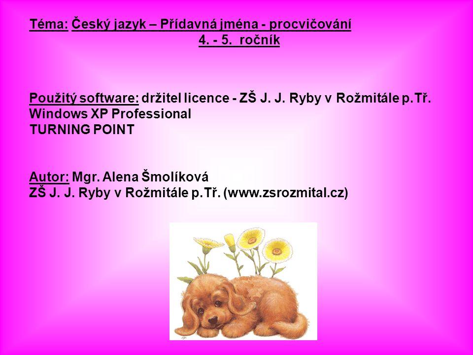 Téma: Český jazyk – Přídavná jména - procvičování 4.