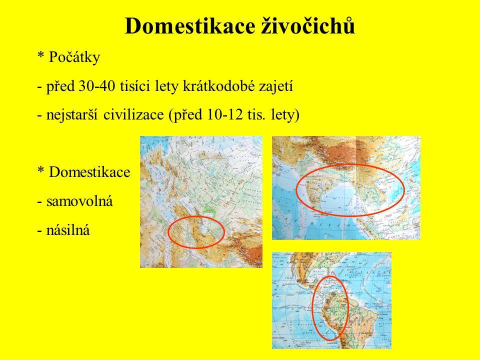 * Počátky - před 30-40 tisíci lety krátkodobé zajetí - nejstarší civilizace (před 10-12 tis.