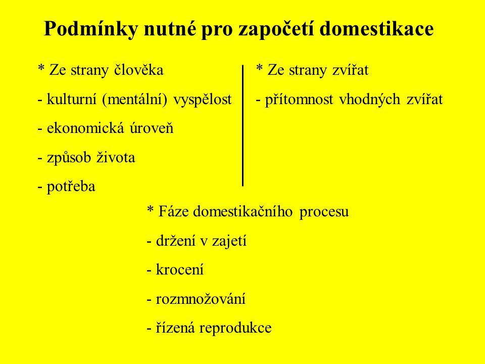 Podmínky nutné pro započetí domestikace * Ze strany člověka - kulturní (mentální) vyspělost - ekonomická úroveň - způsob života - potřeba * Ze strany