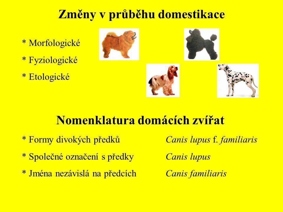 Změny v průběhu domestikace * Morfologické * Fyziologické * Etologické Nomenklatura domácích zvířat * Formy divokých předků * Společné označení s předky * Jména nezávislá na předcích Canis lupus f.