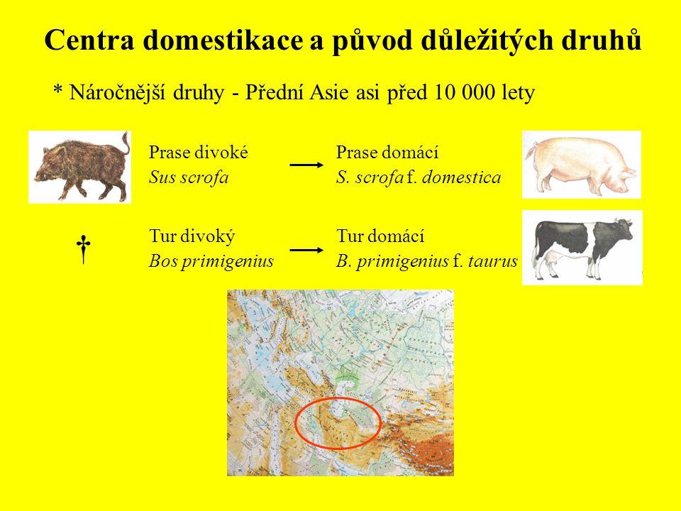 Centra domestikace a původ důležitých druhů * Náročnější druhy - Přední Asie asi před 10 000 lety Prase domácí S. scrofa f. domestica Tur domácí B. pr