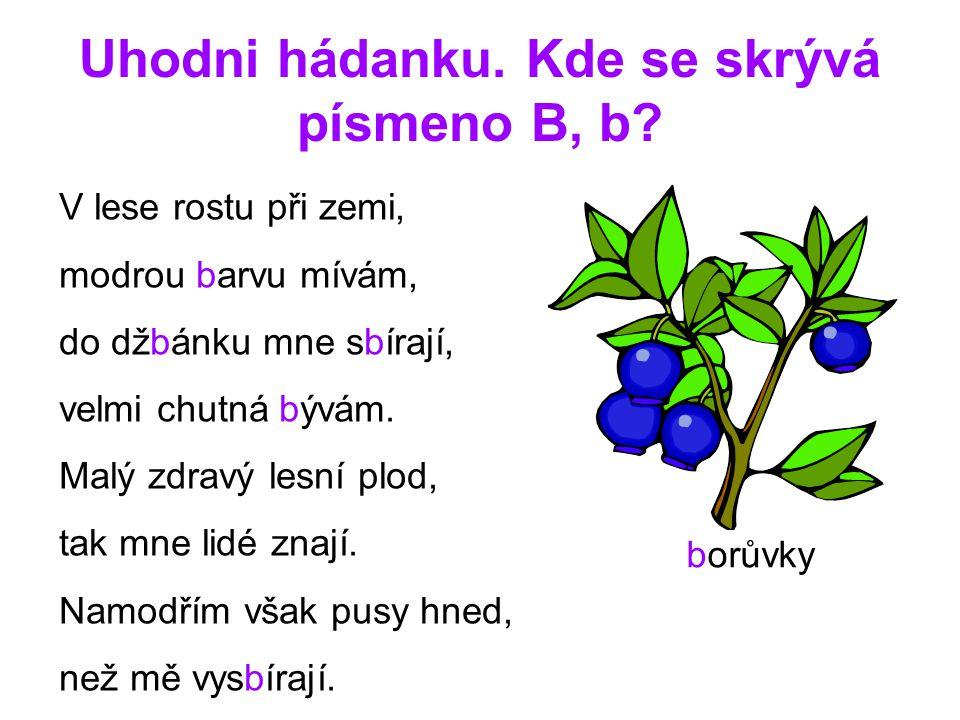 Uhodni hádanku. Kde se skrývá písmeno B, b? V lese rostu při zemi, modrou barvu mívám, do džbánku mne sbírají, velmi chutná bývám. Malý zdravý lesní p