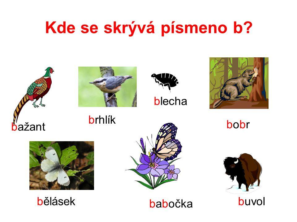 Čti sloupečky slov, hledej písmeno B, b.Vytleskej slova a zjisti počet slabik.