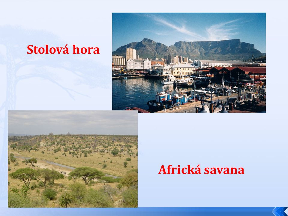 Stolová hora Africká savana