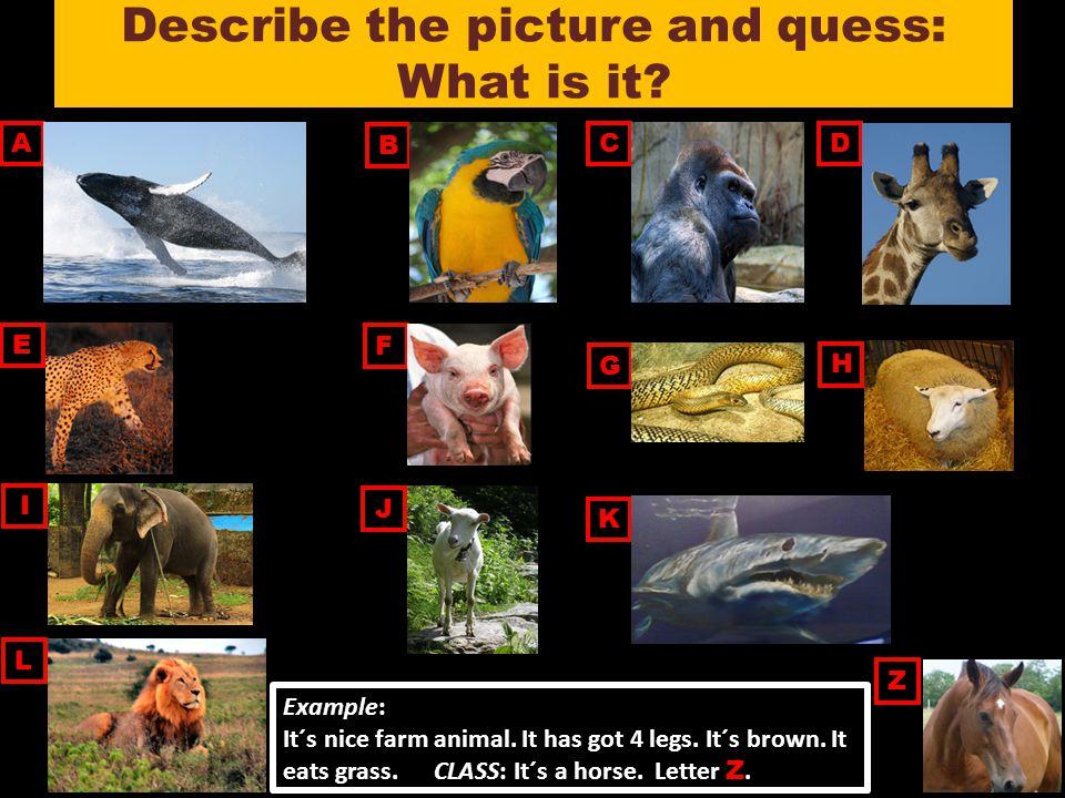 Sources (zdroje) Obrázky [cit.2011-11-08].