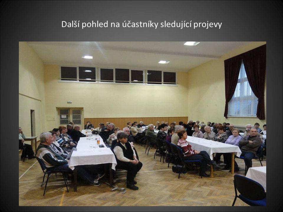 Účastníci schůze sledují projev