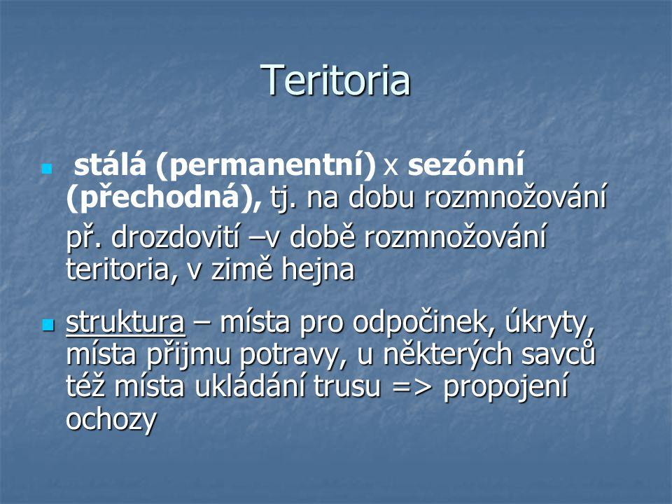 Teritoria tj.na dobu rozmnožování stálá (permanentní) x sezónní (přechodná), tj.