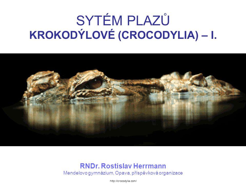 KROKODÝLOVÉ (CROCODYLIA) Vývojovou skupinou plazů, ze kterých se vytvořili krokodýlové, byli archosauři (ti existovali od svrchního permu).