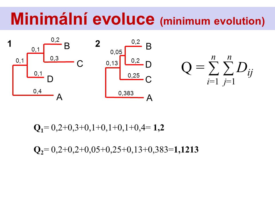 Q = ∑ ∑ D ij n i=1 j=1 Minimální evoluce (minimum evolution) C B D A 0,2 0,3 0,1 0,4 0,1 D B C A 0,2 0,05 0,383 0,13 0,2 0,25 12 Q 1 = 0,2+0,3+0,1+0,1