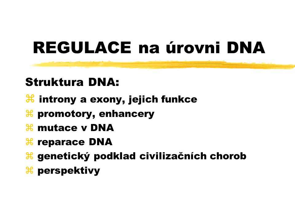 REGULACE na úrovni DNA Struktura DNA: z introny a exony, jejich funkce z promotory, enhancery z mutace v DNA z reparace DNA z genetický podklad civili
