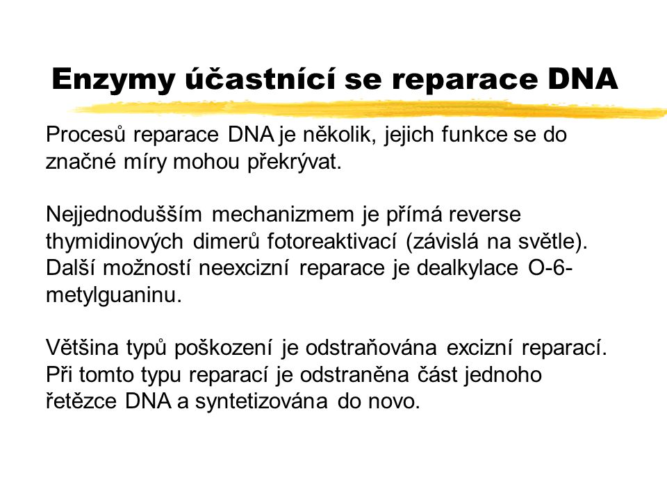 Oxidace bází DNA zJe jedním z nejčastějších typů poškození DNA (EUV, X-záření, řada chemických agens například mitomycin C) zPři replikaci má za následek vznik záměn G-C, A-T zNejčastějším produktem oxidace 7,8-dihydro-8- oxoguanin zRozliší jej formamidopyrimidine-DNA glykosiláza