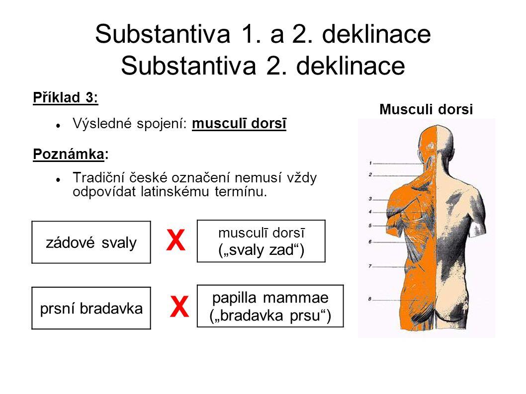 Substantiva 1.a 2. deklinace Substantiva 2.