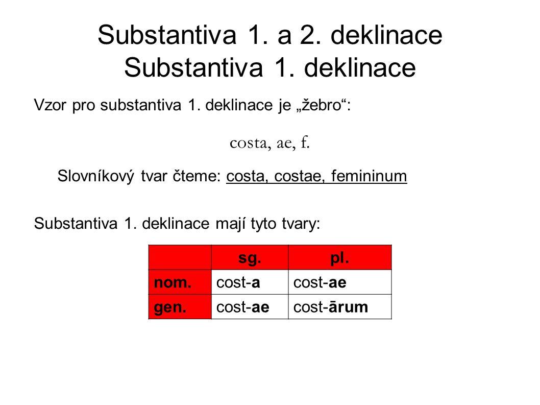 Substantiva 1.a 2. deklinace Substantiva 1. deklinace Vzor pro substantiva 1.