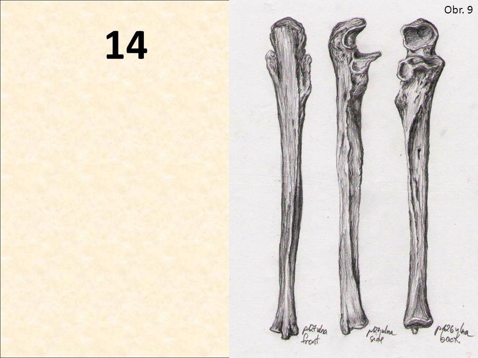 14 Obr. 9
