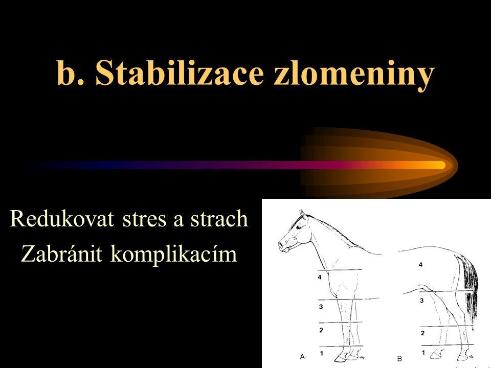 b. Stabilizace zlomeniny Redukovat stres a strach Zabránit komplikacím