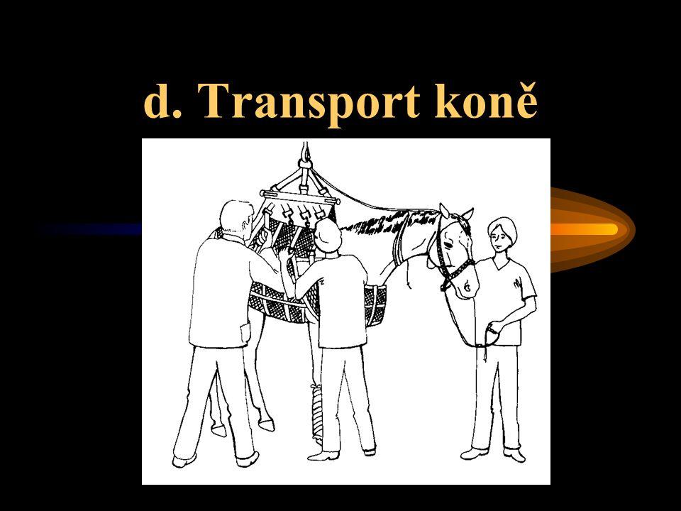 d. Transport koně