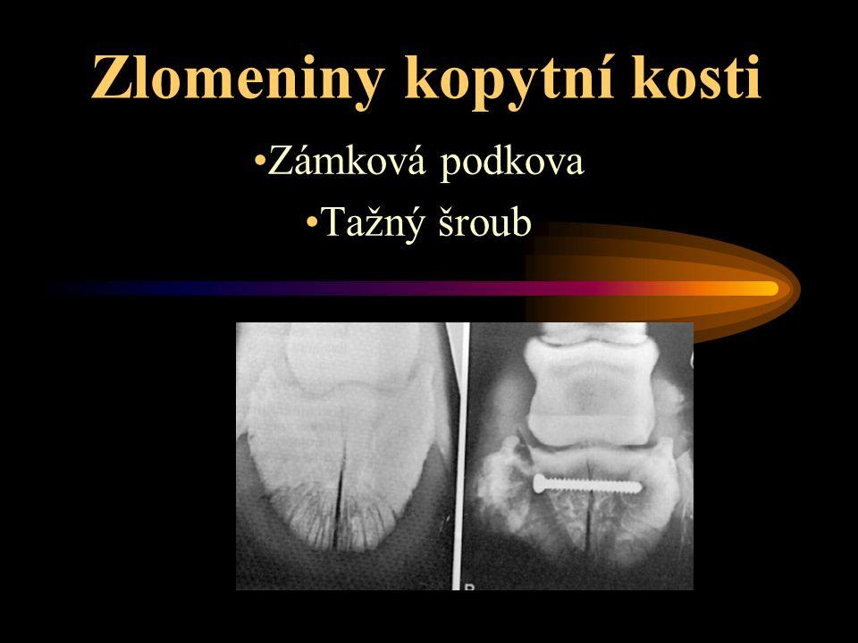 Zlomeniny kopytní kosti Zámková podkova Tažný šroub