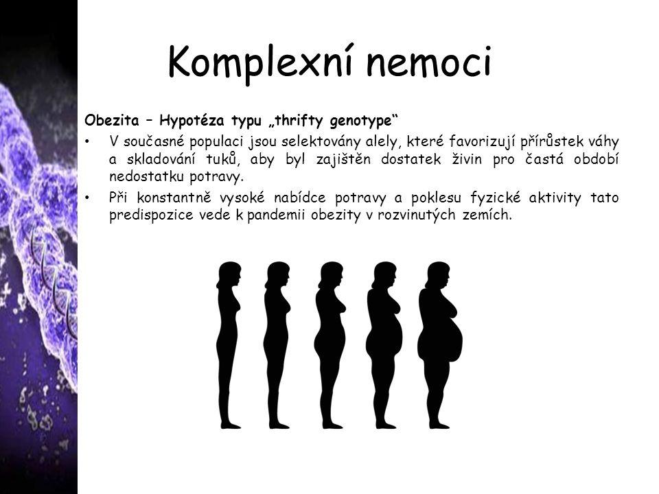 """Komplexní nemoci Obezita – Hypotéza typu """"thrifty genotype"""" V současné populaci jsou selektovány alely, které favorizují přírůstek váhy a skladování t"""