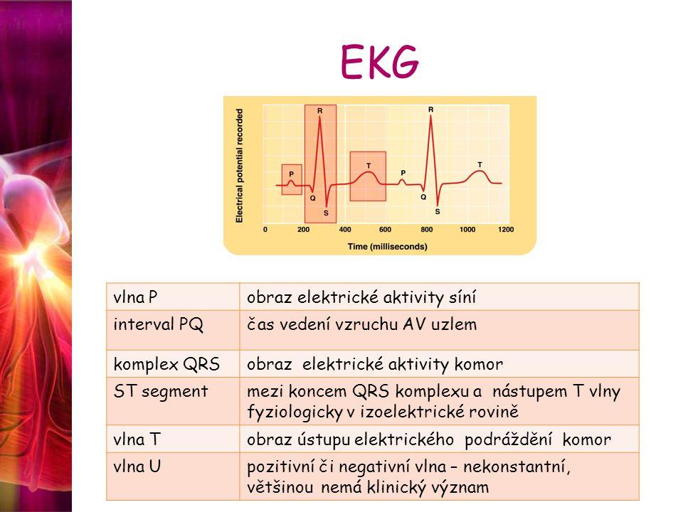 EKG vlna Pobraz elektrické aktivity síní interval PQčas vedení vzruchu AV uzlem komplex QRSobraz elektrické aktivity komor ST segmentmezi koncem QRS k