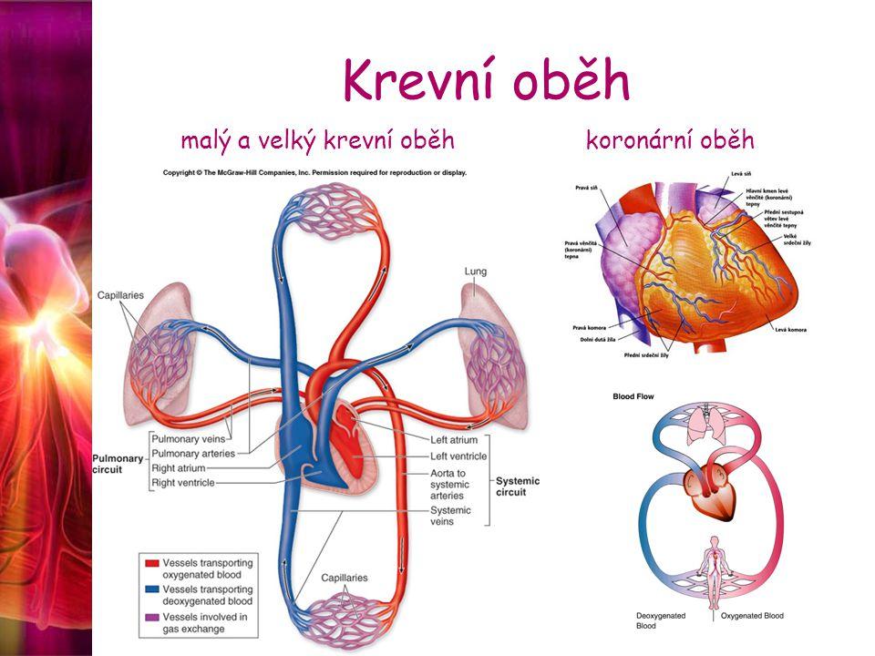 Srdeční selhání Etiologie Kardiální příčiny 1.