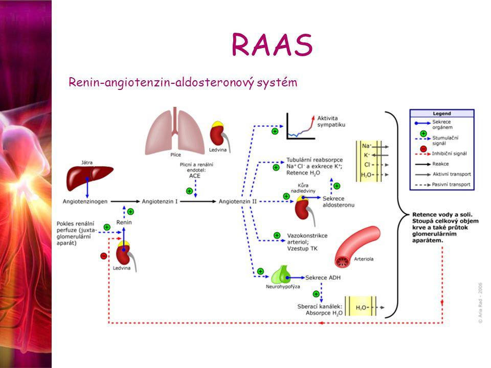 RAAS Renin-angiotenzin-aldosteronový systém
