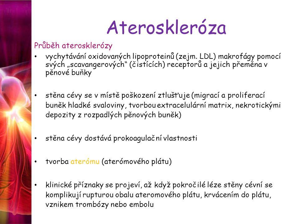 """Ateroskleróza Průběh aterosklerózy vychytávání oxidovaných lipoproteinů (zejm. LDL) makrofágy pomocí svých """"scavangerových"""" (čistících) receptorů a je"""