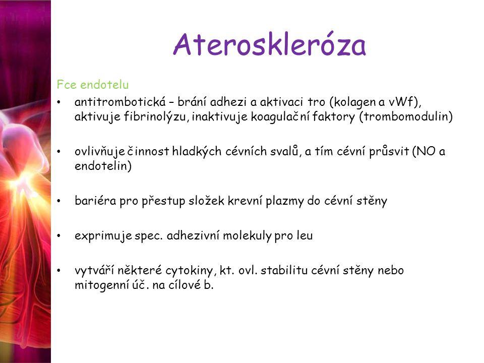 Ateroskleróza Fce endotelu antitrombotická – brání adhezi a aktivaci tro (kolagen a vWf), aktivuje fibrinolýzu, inaktivuje koagulační faktory (trombom