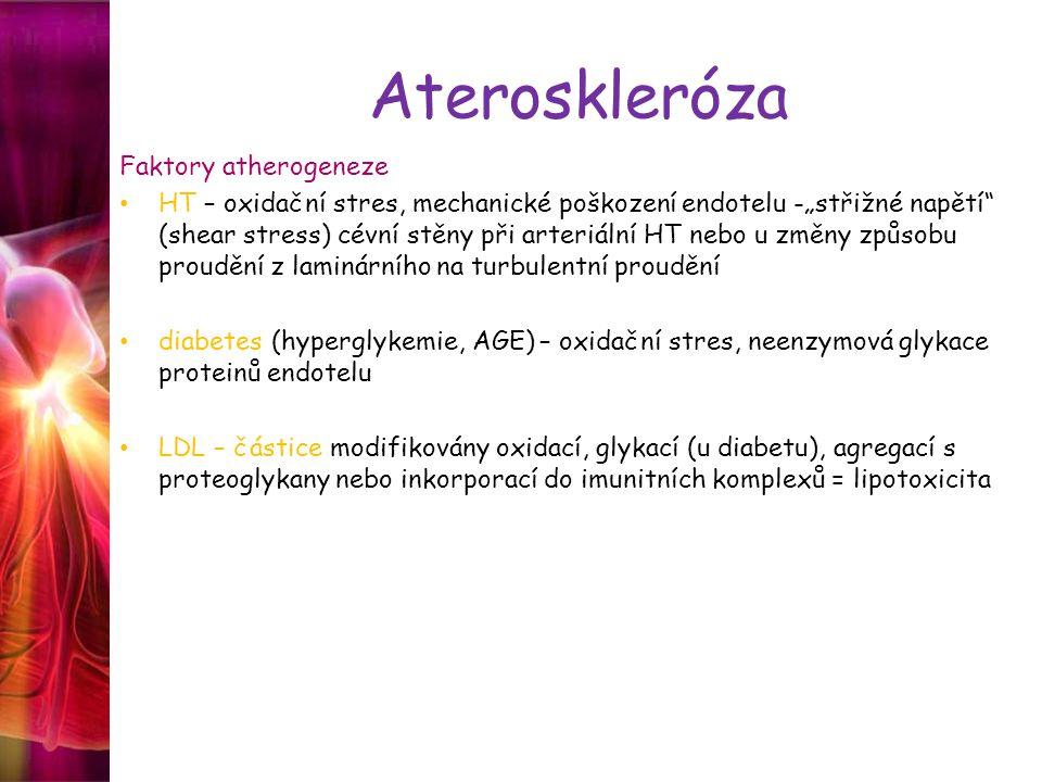 """Ateroskleróza Faktory atherogeneze HT – oxidační stres, mechanické poškození endotelu -""""střižné napětí (shear stress) cévní stěny při arteriální HT nebo u změny způsobu proudění z laminárního na turbulentní proudění diabetes (hyperglykemie, AGE) – oxidační stres, neenzymová glykace proteinů endotelu LDL – částice modifikovány oxidací, glykací (u diabetu), agregací s proteoglykany nebo inkorporací do imunitních komplexů = lipotoxicita"""