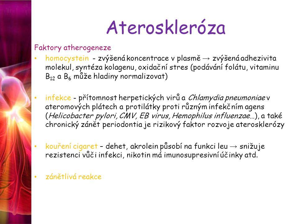 Ateroskleróza Faktory atherogeneze homocystein - zvýšená koncentrace v plasmě → zvýšená adhezivita molekul, syntéza kolagenu, oxidační stres (podávání folátu, vitaminu B 12 a B 6 může hladiny normalizovat) infekce - přítomnost herpetických virů a Chlamydia pneumoniae v ateromových plátech a protilátky proti různým infekčním agens (Helicobacter pylori, CMV, EB virus, Hemophilus influenzae…), a také chronický zánět periodontia je rizikový faktor rozvoje aterosklerózy kouření cigaret – dehet, akrolein působí na funkci leu → snižuje rezistenci vůči infekci, nikotin má imunosupresivní účinky atd.