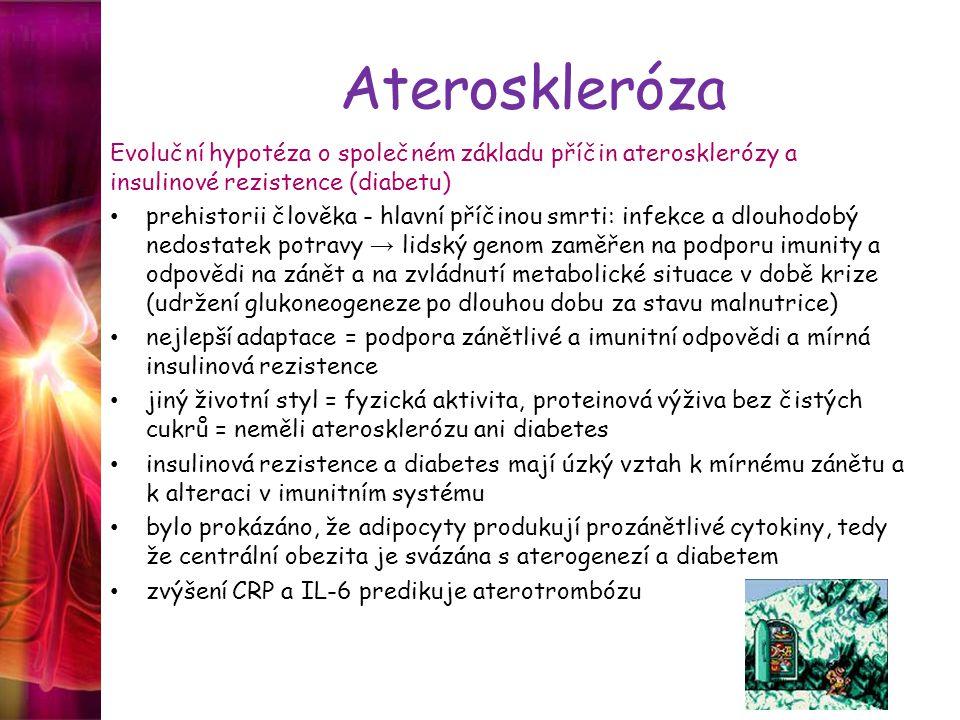 Ateroskleróza Evoluční hypotéza o společném základu příčin aterosklerózy a insulinové rezistence (diabetu) prehistorii člověka - hlavní příčinou smrti: infekce a dlouhodobý nedostatek potravy → lidský genom zaměřen na podporu imunity a odpovědi na zánět a na zvládnutí metabolické situace v době krize (udržení glukoneogeneze po dlouhou dobu za stavu malnutrice) nejlepší adaptace = podpora zánětlivé a imunitní odpovědi a mírná insulinová rezistence jiný životní styl = fyzická aktivita, proteinová výživa bez čistých cukrů = neměli aterosklerózu ani diabetes insulinová rezistence a diabetes mají úzký vztah k mírnému zánětu a k alteraci v imunitním systému bylo prokázáno, že adipocyty produkují prozánětlivé cytokiny, tedy že centrální obezita je svázána s aterogenezí a diabetem zvýšení CRP a IL-6 predikuje aterotrombózu