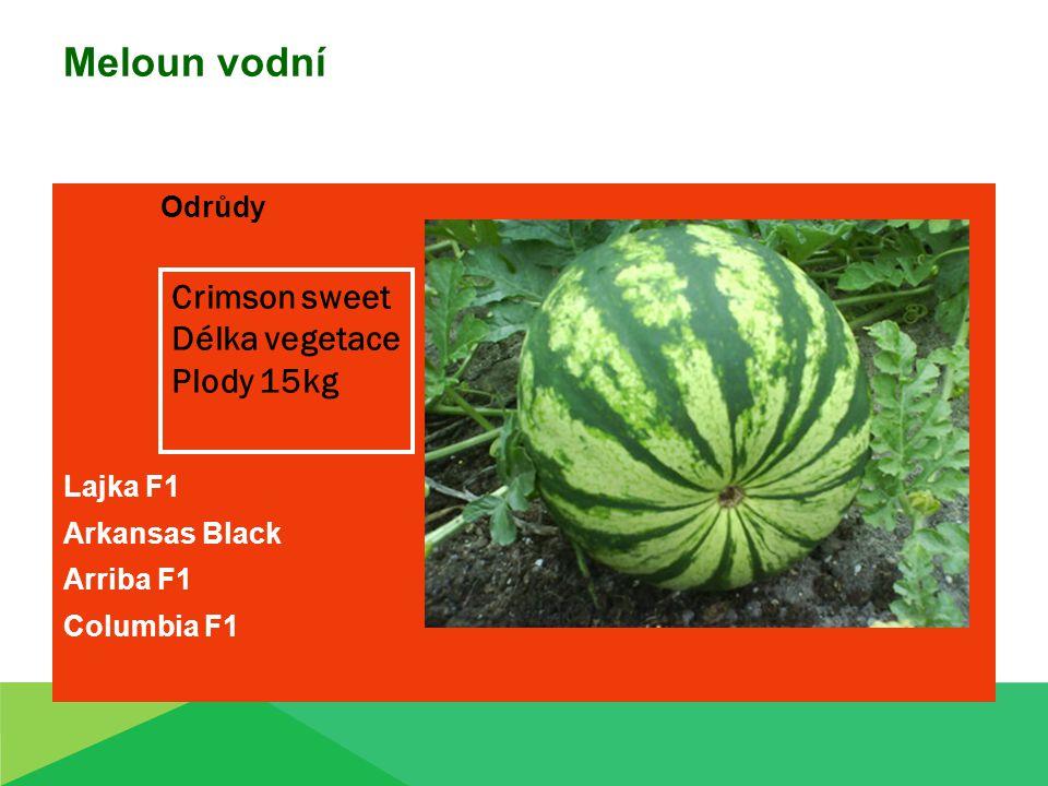 Meloun vodní Odrůdy Lajka F1 Arkansas Black Arriba F1 Columbia F1 Crimson sweet Délka vegetace Plody 15kg