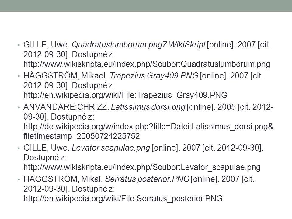 GILLE, Uwe. Quadratuslumborum.pngZ WikiSkript [online]. 2007 [cit. 2012-09-30]. Dostupné z: http://www.wikiskripta.eu/index.php/Soubor:Quadratuslumbor