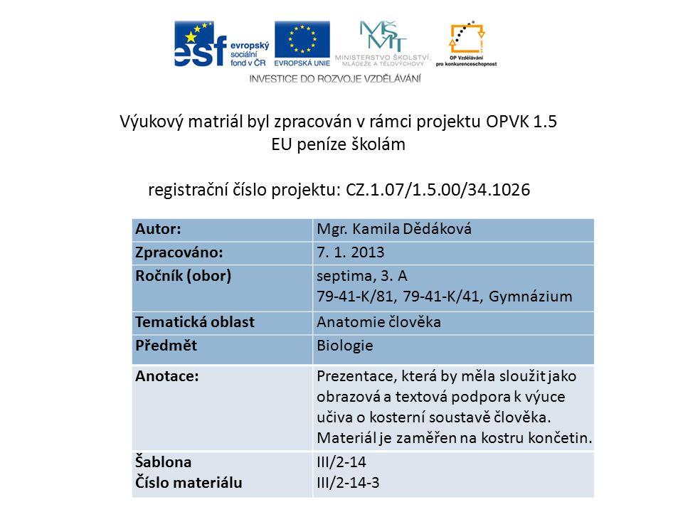 Autor: Mgr.Kamila Dědáková Zpracováno: 7. 1. 2013 Ročník (obor) septima, 3.