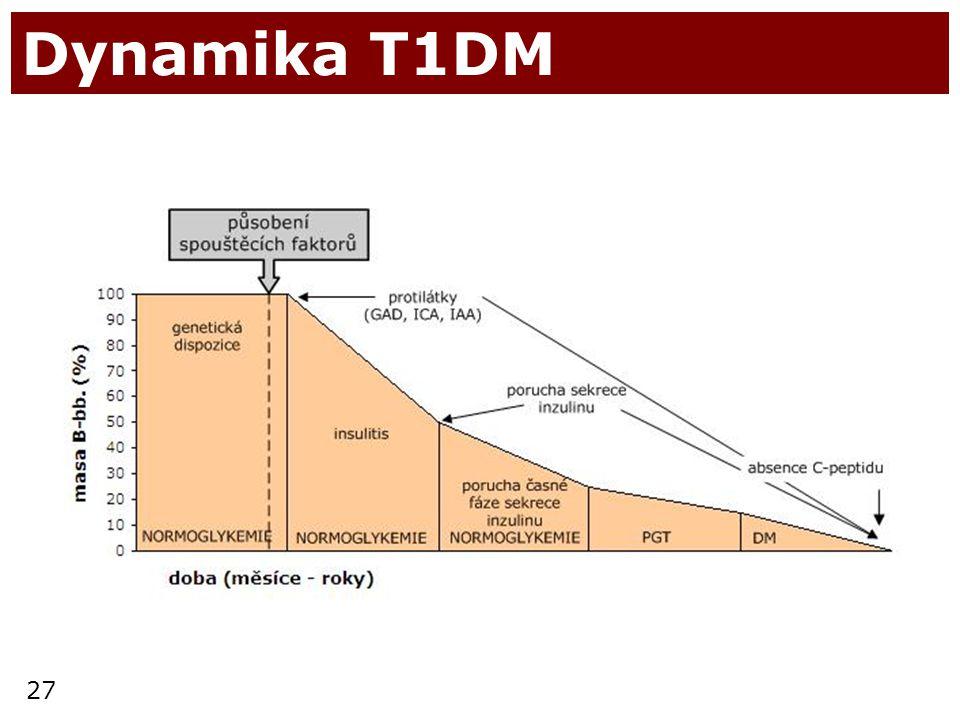 27 Dynamika T1DM